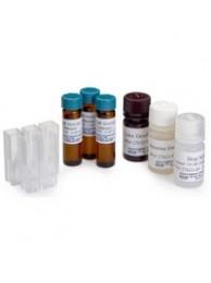 Набор реагентов HACH (ПАВ, 0.02…0.275 мг/л (25 тестов) (Кат. № 2446800) 1008-68 анионный детергент, 25 тестов